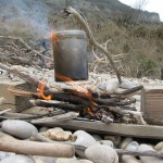 survival courses on the seashore and along the coast and woodland survival courses