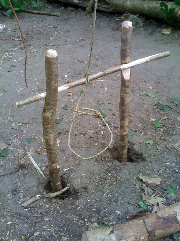 Trigger traps and snares made from wild resources on a bushcraft survival course