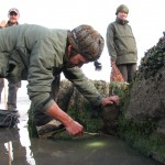 Bushcraft courses, survival courses, foraging courses, bushcraft UK, bushcraft Scotland