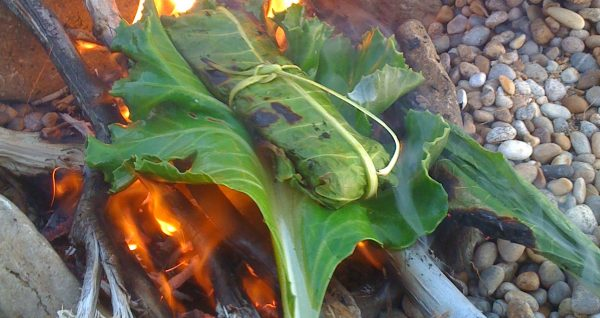 Bushcraft Cooking fish wrapped in wild edible greens on a drift wood fire