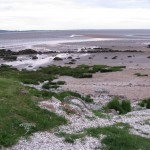The seashore along the coast in south west scotland is perfect for a a coastal bushcraft course