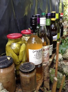 Preserving for long term bushcraft living course