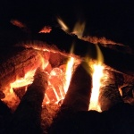 Camp fire cookery on a woodland survival course
