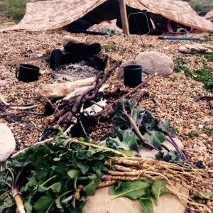 Survival courses on the coast with Coastal Survival School, survival shelter on the beach, cooking using driftwood.