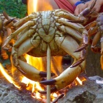 Cooking course, crab over a fire