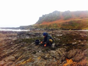 Survival course location, coastal survival