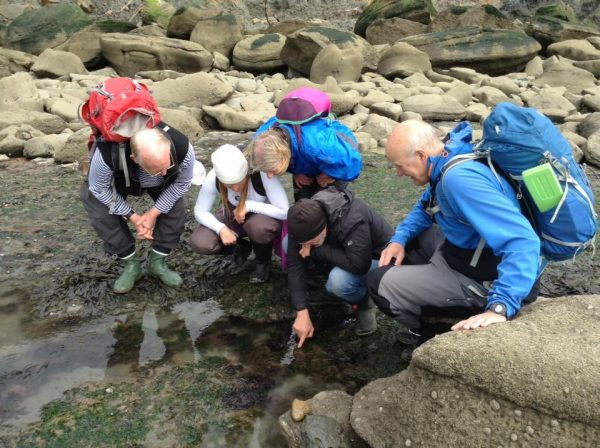 bushcraft courses on the coast suitable for all