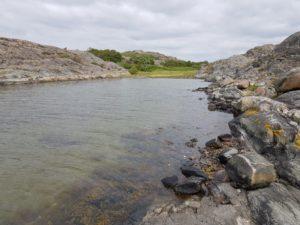 Sweden survival course