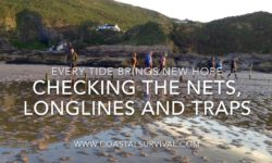 Complete Coastal hunter Gatherer courses feedback